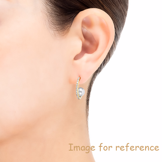 Earrings 925 sterling silver fine jewelry OEM ODM factory